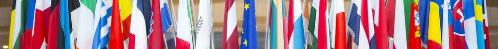European Authorized Representative