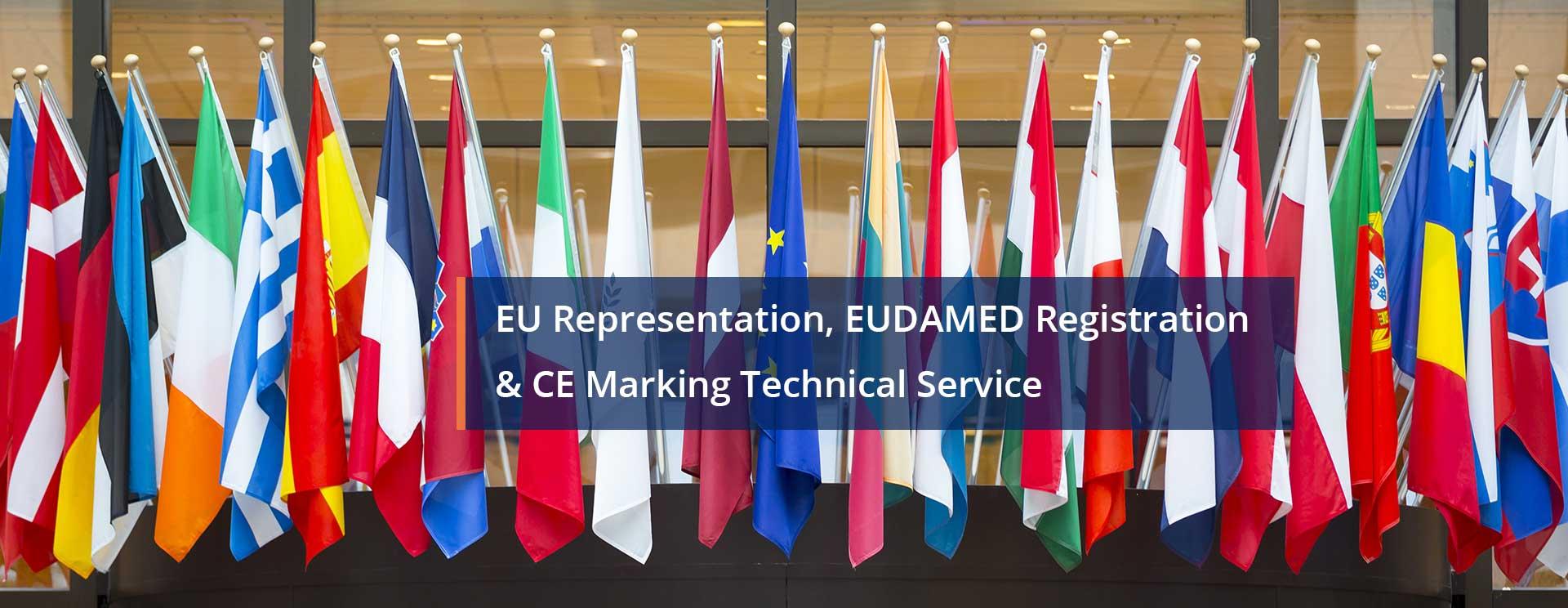 EU Representation